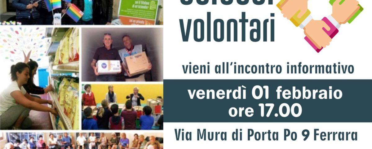 20190201 Volontari cercasi